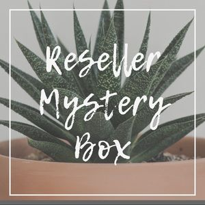 Not So Mystery 6 Piece Reseller Box B7